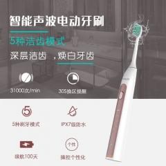OEM/ODM礼品定制口腔医院成人声波电动牙刷家用美白usb